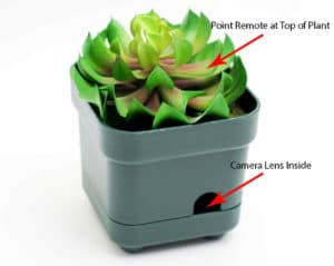 spy camera in potted plant