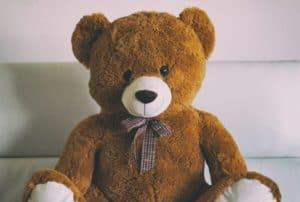 secret spy camera in teddy